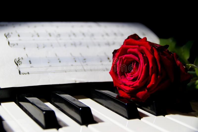Romantic Music Rose Piano Sheet Stock Images - Download 170