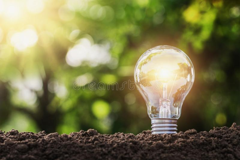 Concept saving energy lightbulb with solar power. In nature stock photos