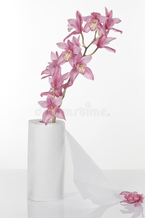 Download Concept Still Life With Toilet Paper And Orchid Stock Photo - Image: 18064166