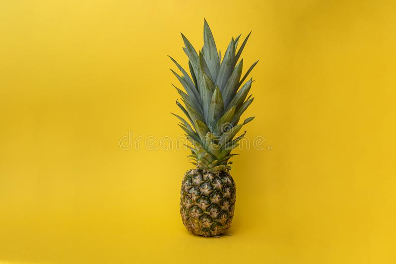 Concept of summer with a ananas, pineapple shot against a yellow background. Flat lay, front view with copy space. Concept of summer and fresh food with a ananas stock images