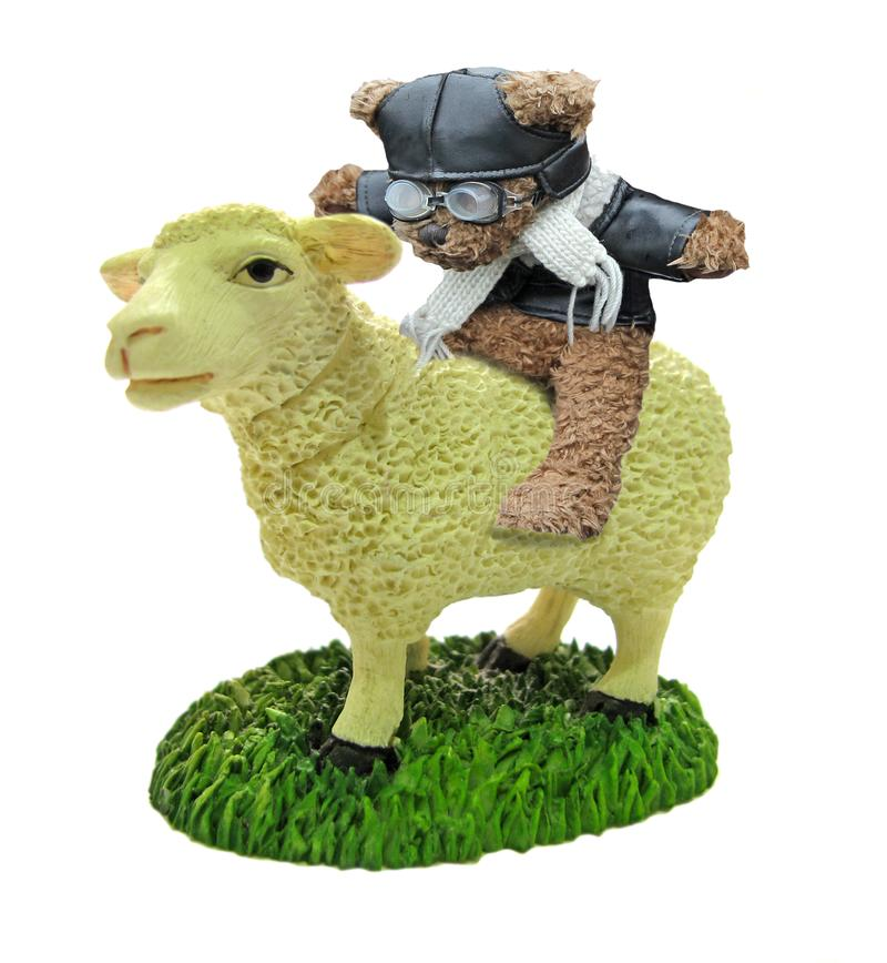 Teddy bear riding sheep leather jacket glasses rider ride royalty free stock photos