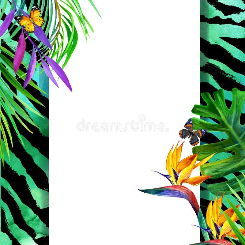 Concept tropical d'été pour la conception usine d'aquarelle illustration de vecteur