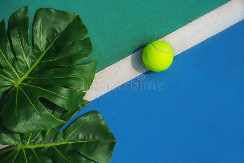 Concept tropical de tennis d'été avec les feuilles et la boule vertes de monstera sur la ligne blanche sur le court de tennis dur photos libres de droits