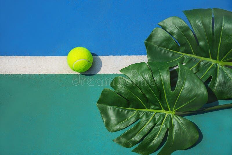 Concept tropical de tennis d'été avec les feuilles et la boule vertes de monstera sur la ligne blanche sur le court de tennis dur photos stock