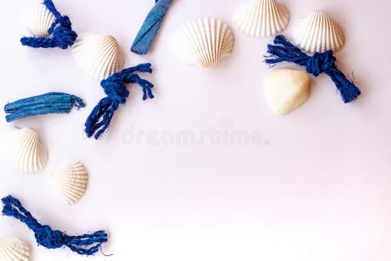 Concept tropical de vacances d'été avec des étoiles de mer, des coquillages et des cordes de mer sur le fond rose Configuration p photographie stock
