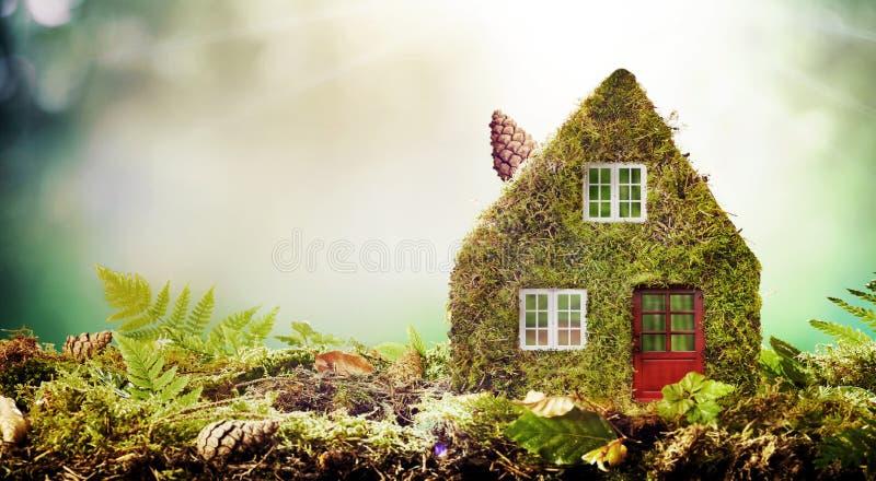 Concept van het Eco het vriendschappelijke huis met mos behandeld model stock afbeelding
