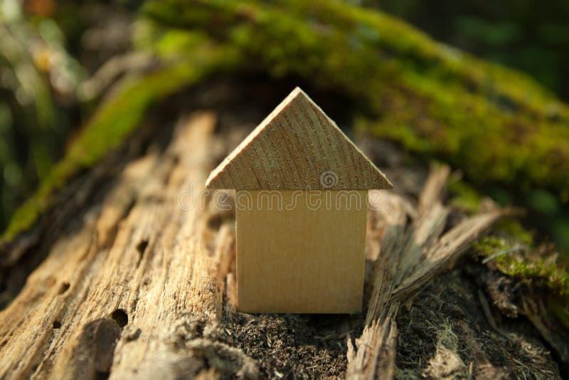 Concept van het Eco het Vriendschappelijke huis, het concept van het Milieubehoud, Groene de lenteachtergrond, modelwoning in ope royalty-vrije stock foto