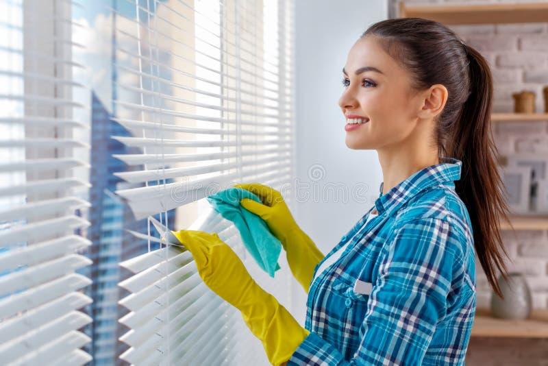 Concept voor de huis schoonmakende diensten stock afbeeldingen