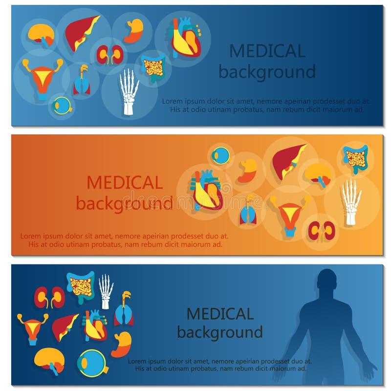 Concept of web banner. Medical background.Human vector illustration