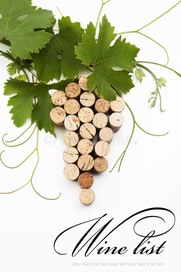 Download Concept  wine list design stock photo. Image of branch - 19976998