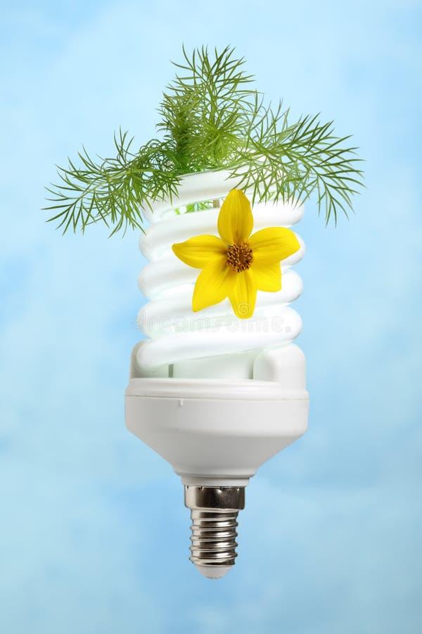 Concepten milieuvriendelijke macht stock fotografie
