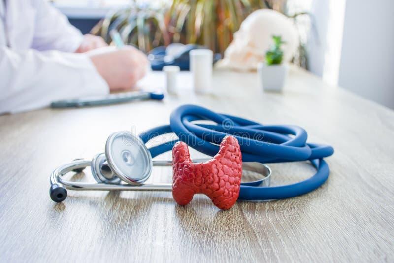 Conceptenfoto van diagnose en behandeling van schildklier In voorgrond is model van schildklier dichtbij stethoscoop op lijst in  royalty-vrije stock foto