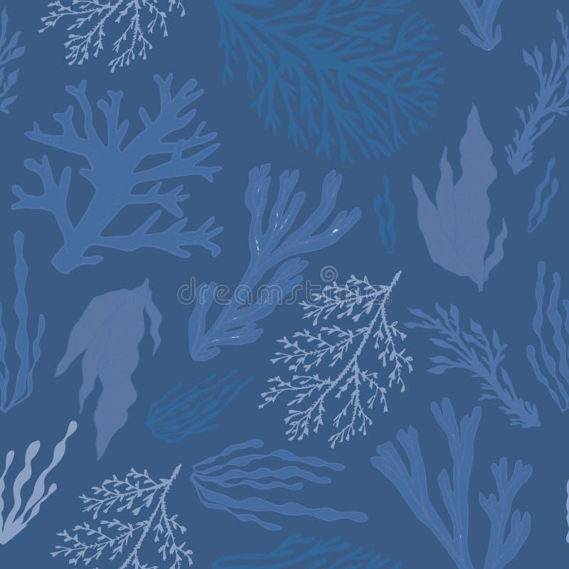 Conception à la mode d'algue d'été illustration libre de droits