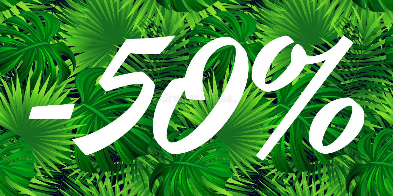Conception de bannière de vente Affiche de remise de saison Bon d'offre spéciale la publicité saisonnière de promotion Fond tropi illustration de vecteur