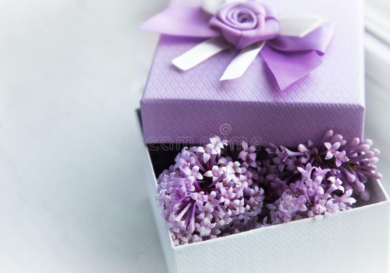 Conception de cadeau dans la couleur lilas Boîte avec le ruban et le lilas de floraison images stock