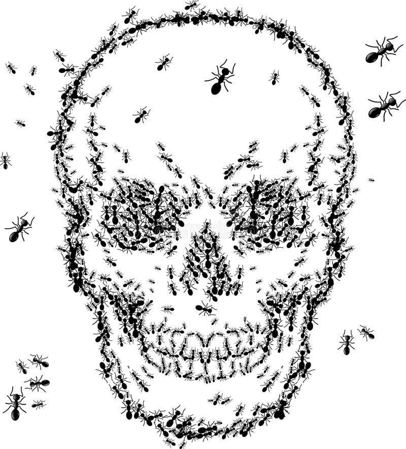 Conception de croquis de crâne avec la fourmi illustration de vecteur