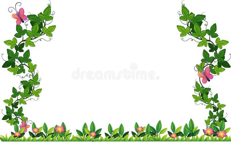 Conception de frontière avec la vigne et les papillons illustration de vecteur