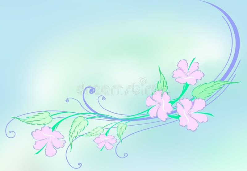 Conception de ketmie illustration stock