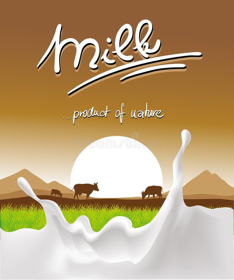 Conception de lait avec l'éclaboussure, la vache et le coucher du soleil de lait illustration de vecteur