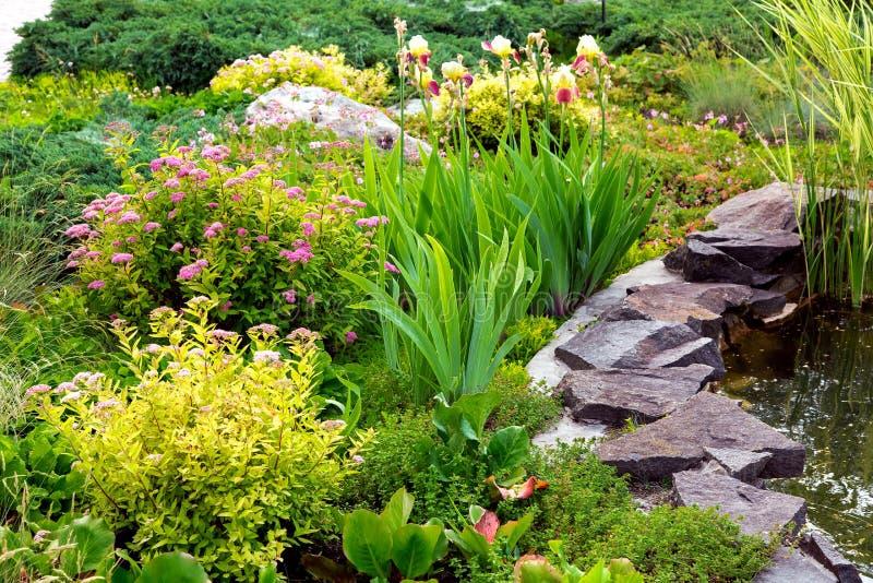 Conception de paysage avec des plantes et des fleurs image libre de droits