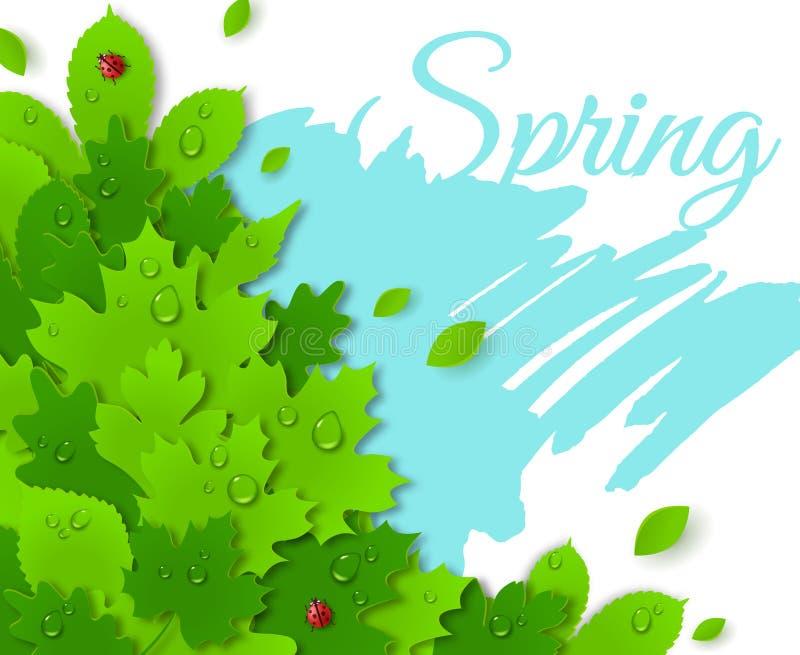 Conception de ressort avec les feuilles vertes contre les jeunes jaunes blancs de source de fleur de concept de fond illustration libre de droits