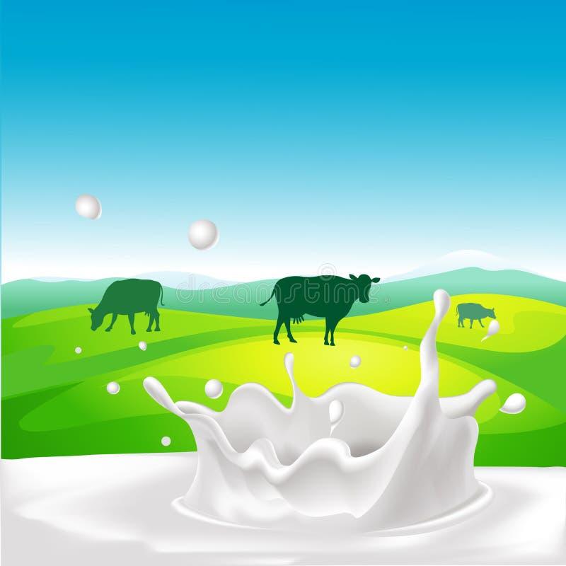 Conception de vecteur avec la vache, éclaboussure de lait illustration stock
