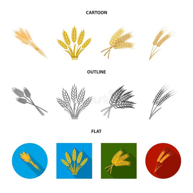 Conception de vecteur d'icône de blé et de tige Placez de l'illustration courante de vecteur de bl? et de grain illustration stock