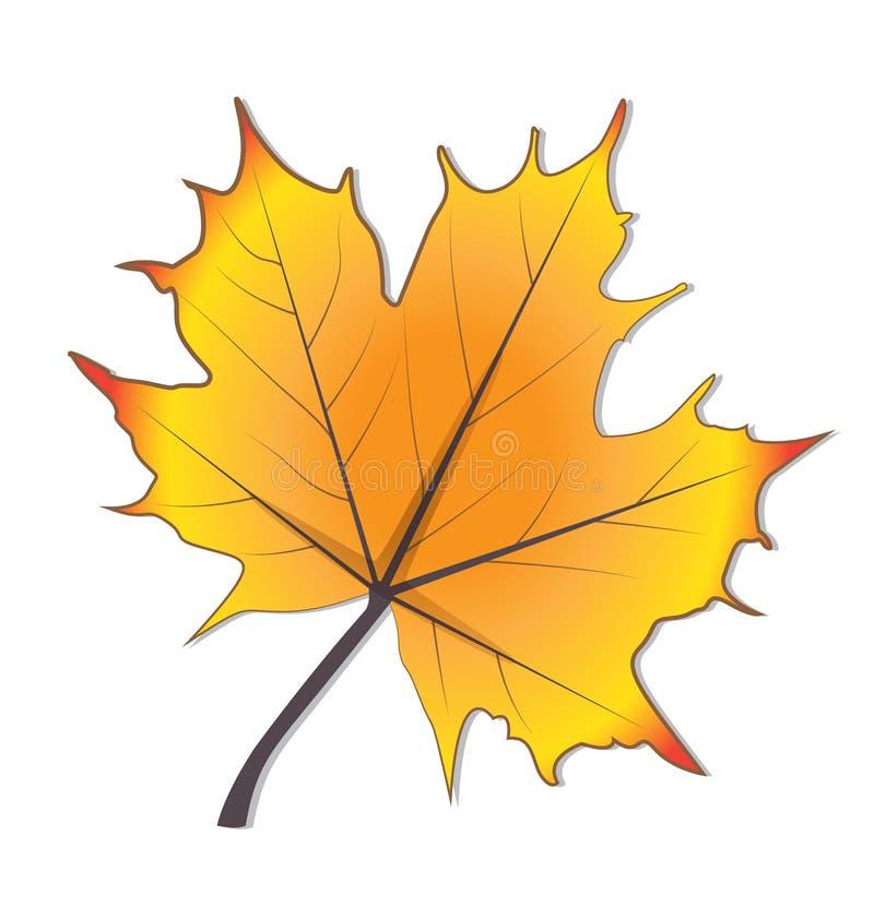 Conception de vecteur d'icône de feuille stylisée par saison d'automne illustration de vecteur