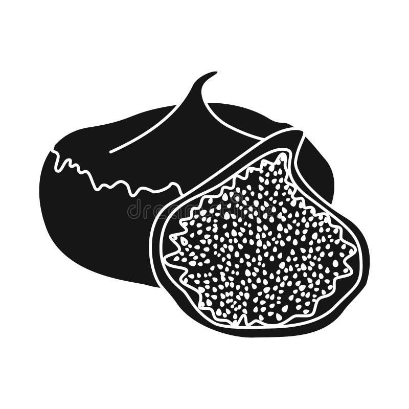 Conception de vecteur des figues et du symbole sec Collection de figues et icône de vecteur de régime pour des actions illustration de vecteur