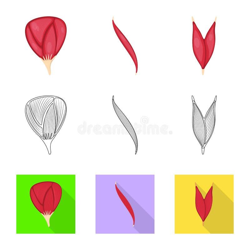 Conception de vecteur de fibre et de signe musculaire Placez de l'illustration de vecteur d'actions de fibre et de corps illustration libre de droits