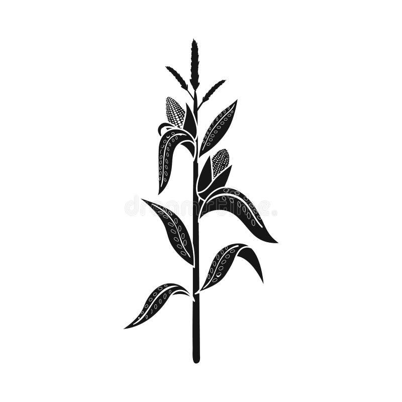 Conception de vecteur de logo de ma?s et de tige Placez de l'icône de vecteur de maïs et de champ pour des actions illustration stock