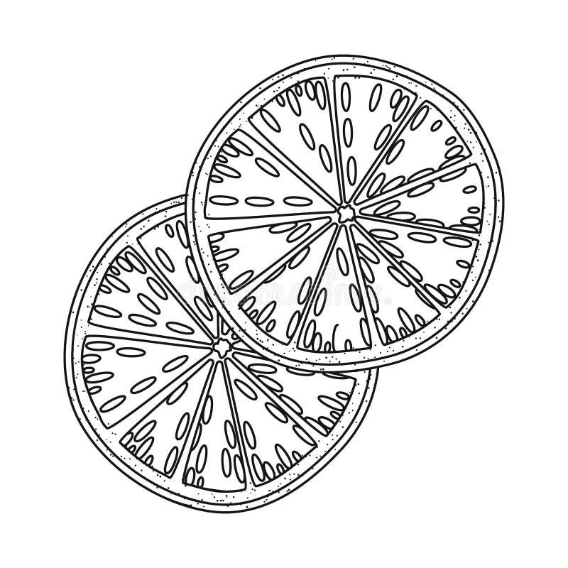Conception de vecteur de logo orange et sec Collection d'icône orange et juteuse de vecteur pour des actions illustration de vecteur