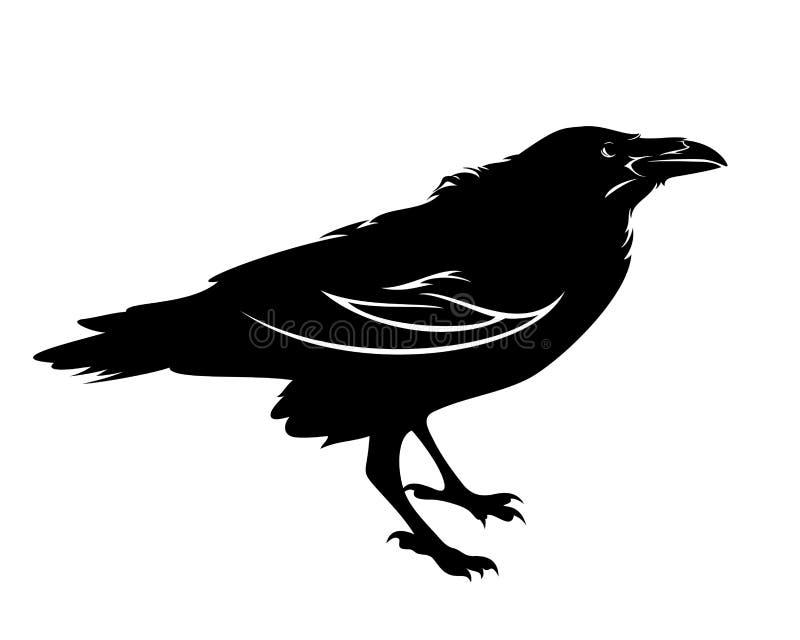 Conception de vecteur de noir d'oiseau de Raven illustration stock