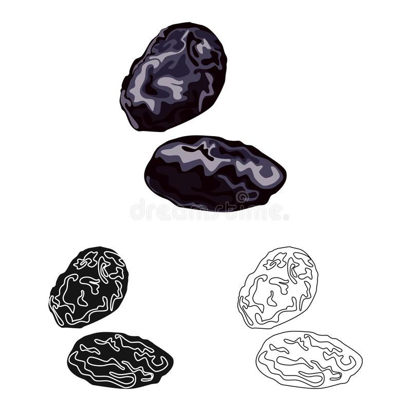 Conception de vecteur de prune et d'icône sèche Placez de la prune et de l'illustration courante mûre de vecteur illustration stock