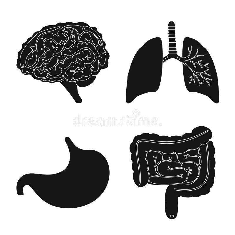 Conception de vecteur de recherche et de logo de laboratoire Collection de symbole boursier de recherches et d'organe pour le Web illustration stock