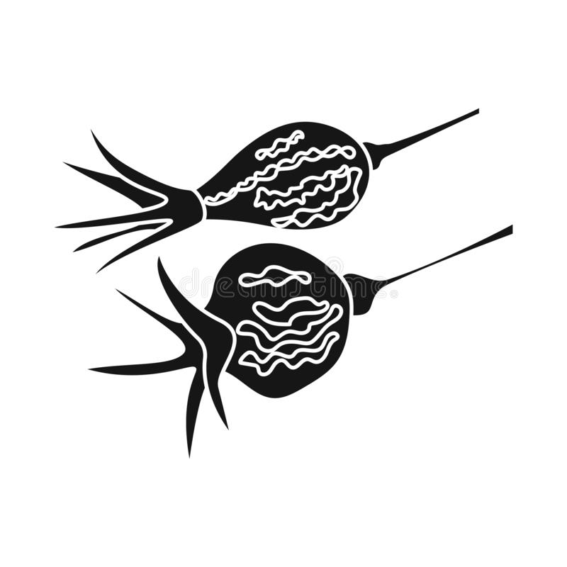 Conception de vecteur de rose et d'icône sèche Placez de la rose et du symbole boursier de botanique pour le Web illustration de vecteur