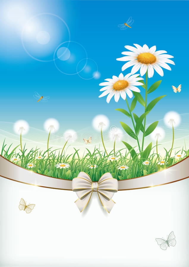 Conception florale avec des marguerites et des pissenlits illustration de vecteur