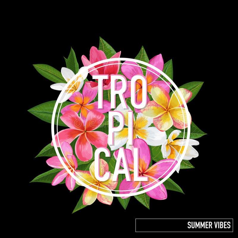 Conception florale tropicale d'été Le Plumeria rose fleurit le fond pour des affiches, T-shirt, tissu Carte botanique, bannière illustration stock