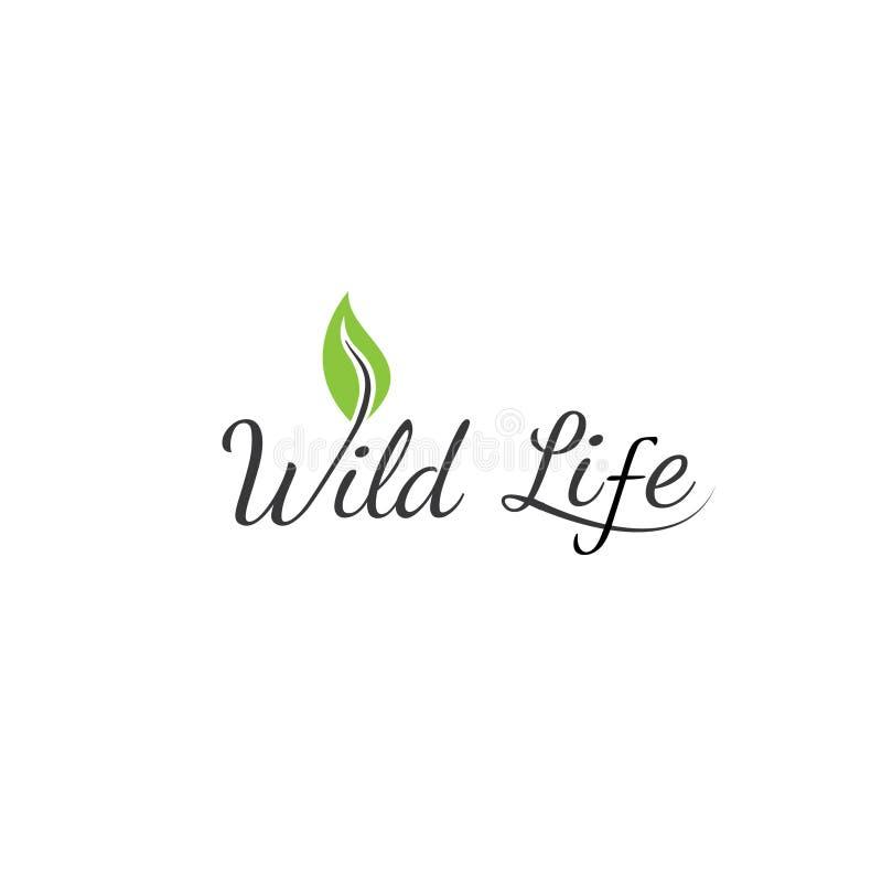 Conception linéaire de logo organique de vecteur de lettre de W Bio élément de conception de label de nourriture illustration stock