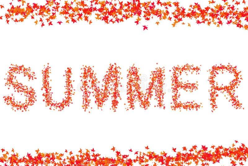 Conception lumineuse rouge de base de slogan d'inscription d'été sur le sort blanc de cadre de fond de la flore de feuille d'érab illustration de vecteur