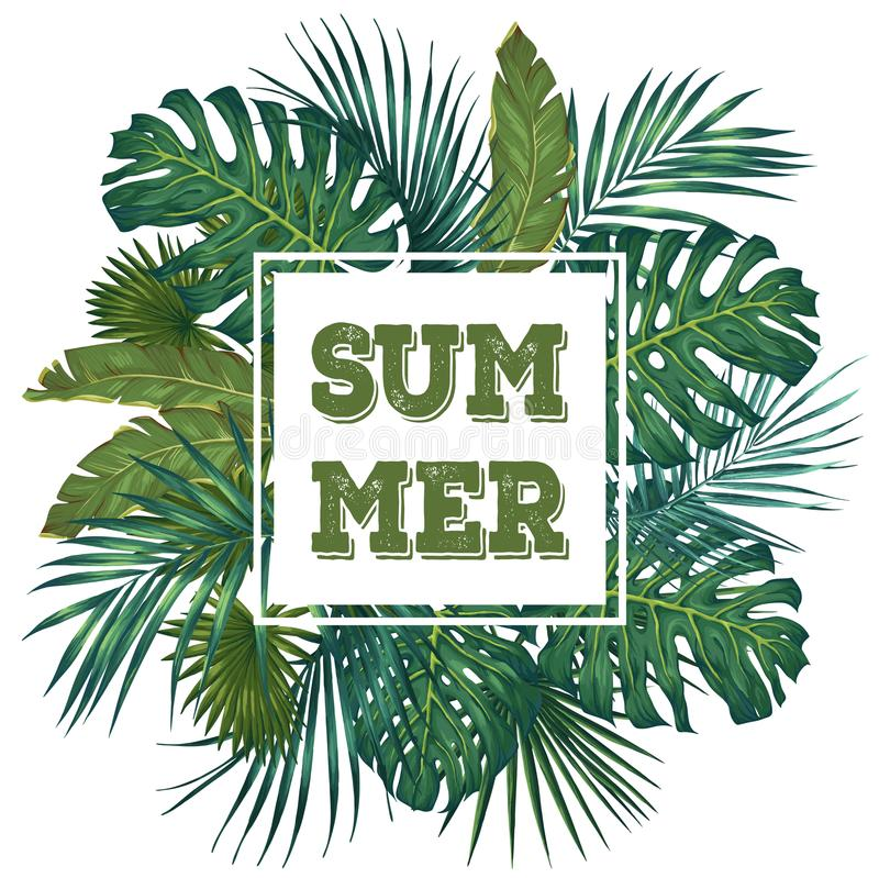 Conception tropicale à la mode de feuilles Illustration botanique de vecteur Thème d'été illustration de vecteur