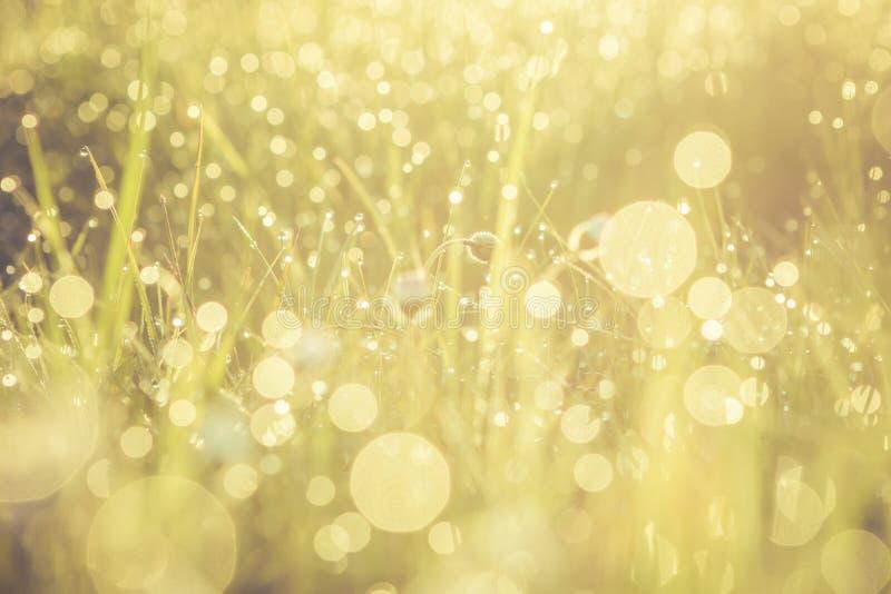 Concepto abstracto de oro del fondo, foco suave, bokeh, tono caliente imagen de archivo