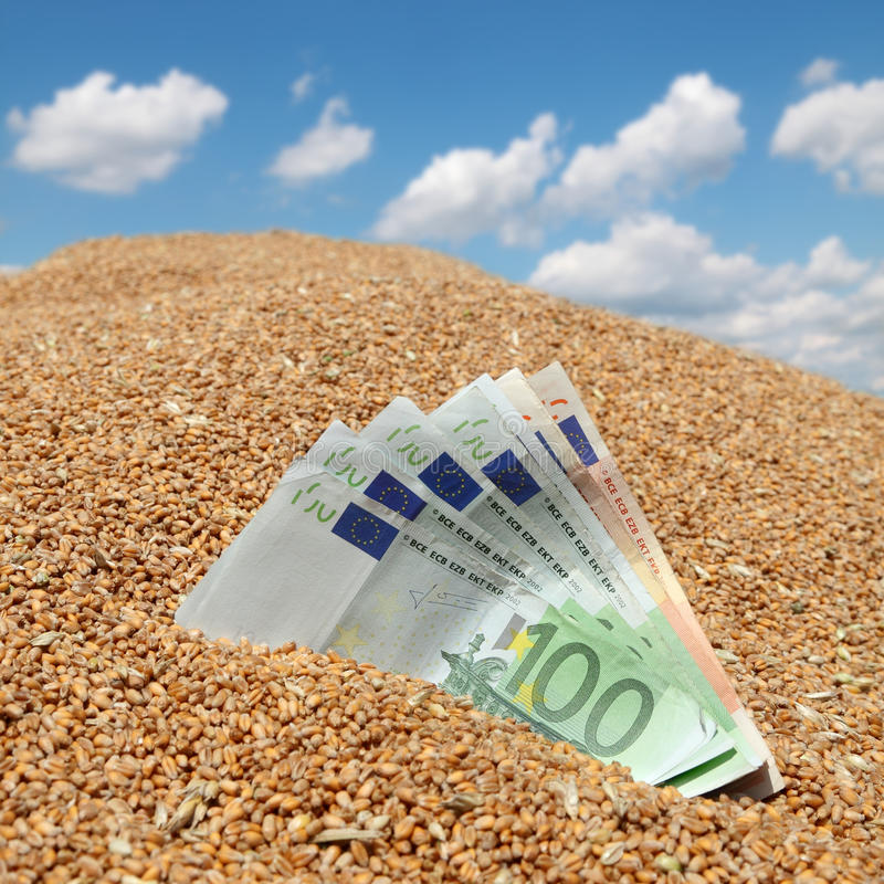 Concepto agrícola del billete de banco del trigo y del euro fotos de archivo libres de regalías
