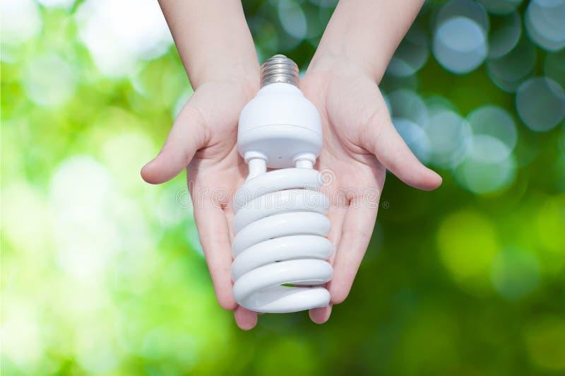 Concepto ahorro de energía, mano de la mujer que sostiene la bombilla en fondo verde de la naturaleza foto de archivo libre de regalías