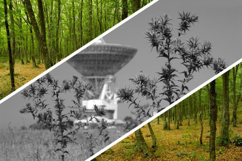 Concepto ambiental imagenes de archivo
