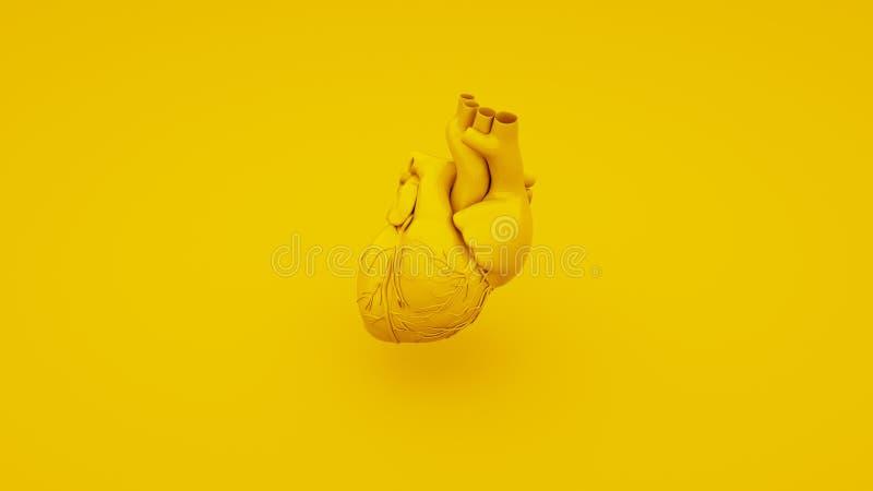 Concepto anatómico amarillo del corazón ilustración 3D stock de ilustración