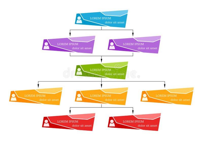 Concepto colorido de la estructura del negocio, esquema de la carta de organización corporativa ilustración del vector
