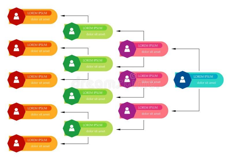 Concepto colorido de la estructura del negocio, esquema de la carta de organización corporativa libre illustration