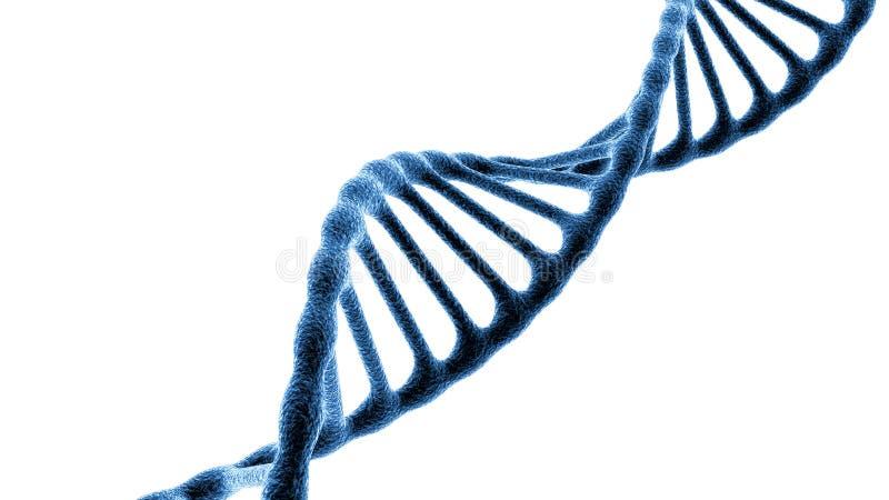 Concepto de bioquímica con la molécula de la DNA aislada en el fondo blanco, representación 3d stock de ilustración