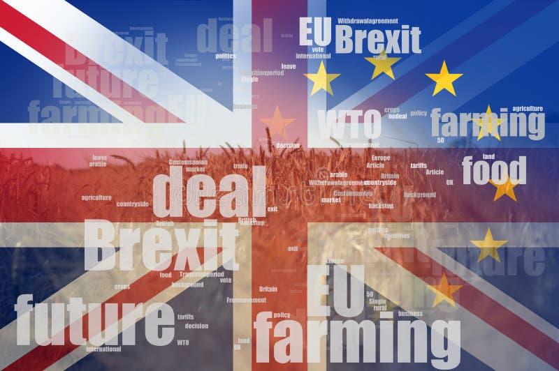 Concepto de Brexit Un campo del trigo y de la cebada del verano Con una nube de la palabra de la jerga del brexit y las banderas  ilustración del vector